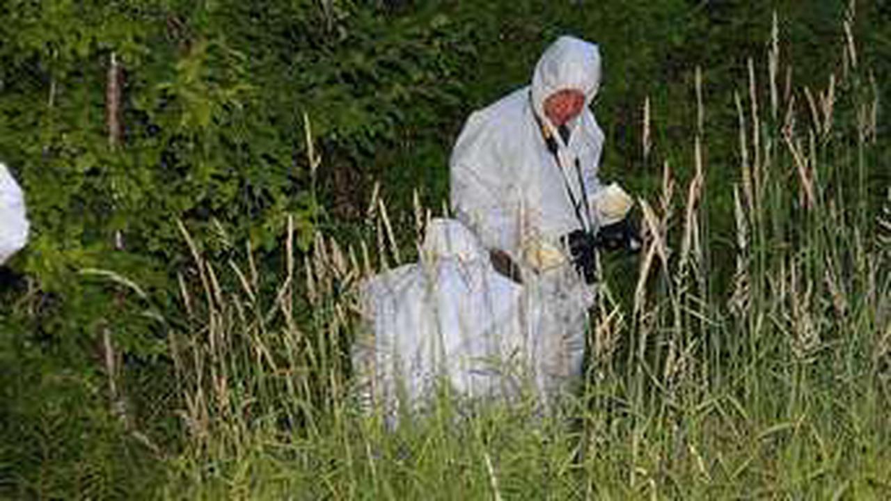Mordfall Monika: Hammer Polizei arbeitet am Cold Case