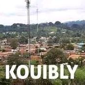 Législatives à Kouibly : deux candidats se croisent dans un village, ce qui s'est passé