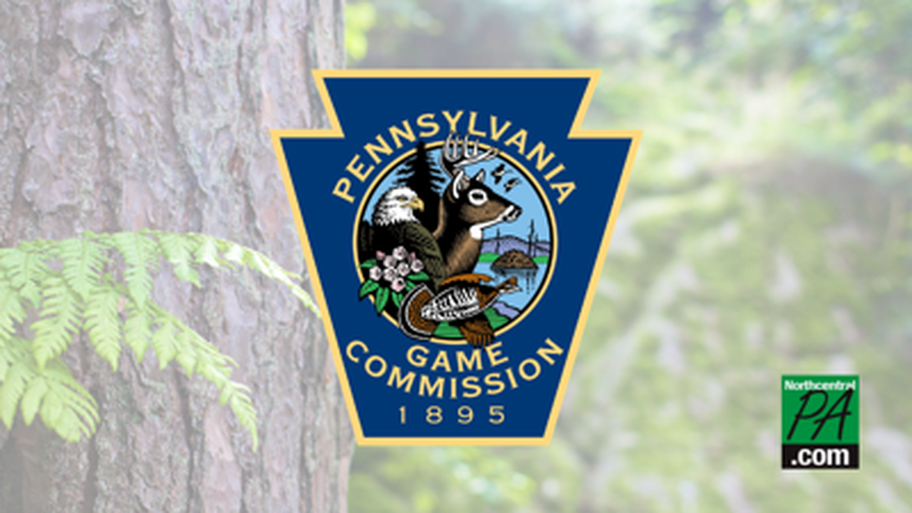 Commissioners to discuss 2021-22 hunting, trapping seasons