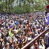 UDA Party Popularity Rises in Luhya Community as Large Numbers Turns to Support Kaikai