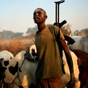 Kwara Farmers Cry Out as Fulani Herdsmen From Oyo Take Over 13 Communities