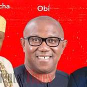 Opinion: Who Amongst These 3 Is The Best Igbo Candidate For 2023 Presidency?