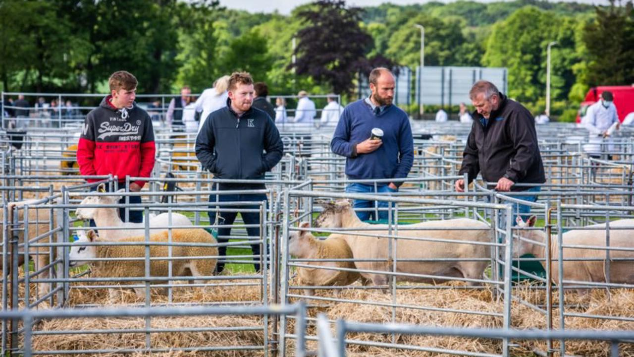 Highland 'Showcase' hailed a success as exhibitors support landmark event