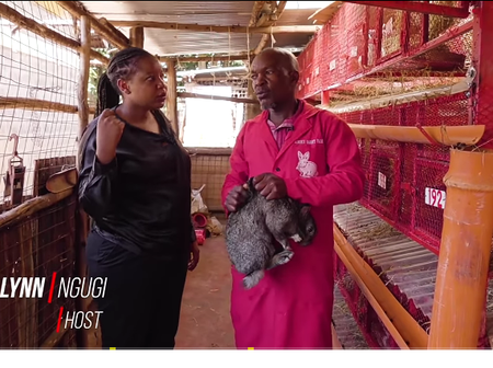 Rabbit urine earns this Kenyan man 100K in an month- Inspire Kenya