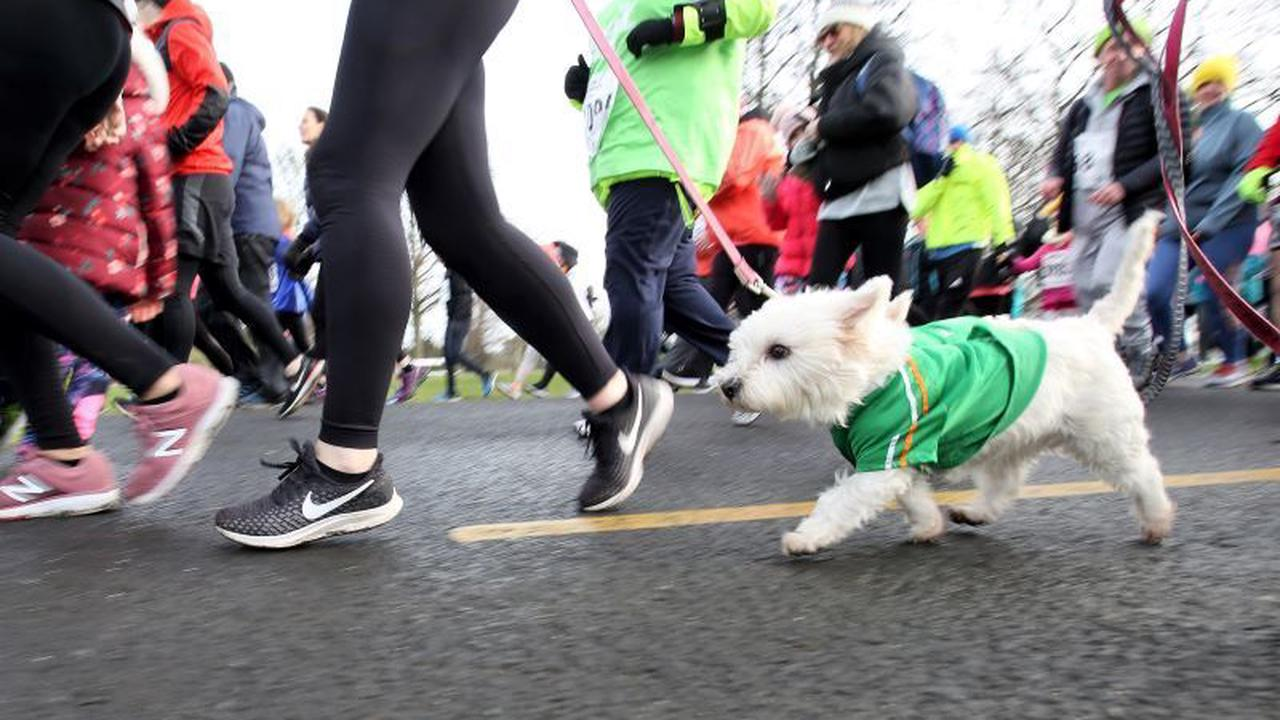 New virtual fitness event will take you on a pub crawl of Ireland