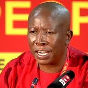 Julius Malema Drops R1m Damages Claim Against Ex EFF MP As He Reveals His Big Secret In Court Appeal
