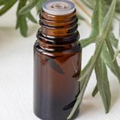 منحة ربانية في تلك النبته لها فوائد مذهلة للشعر.. تعالج تساقطه وتقلل التهابات فروة الرأس