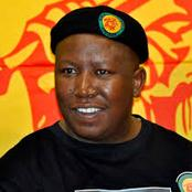 Julius Malema turns 40: A political life filled with controversy and triumphs.