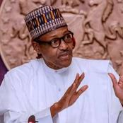 See What Buhari Ordered The Police And Military To Do