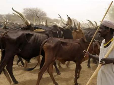 Foodstuffs And Cattle Dealers Union Threatens Strike, See How Much Billion Compensation They Want