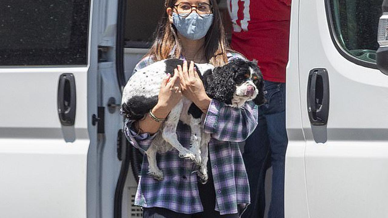 Olivia Munn goes barefoot to get her beloved dogs groomed outside her LA home ... amid rumors she's dating recently single comic John Mulaney