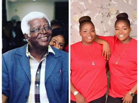 Checkout Beautiful Twins That Nollywood Actor Chief Bruno Iwuoha That Just Die Left Behind.