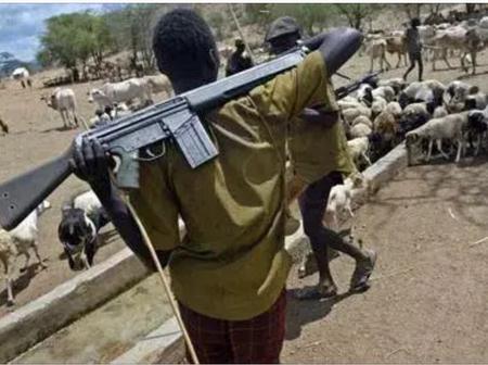 Criminal Herdsmen In South East: