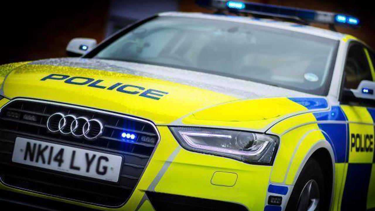 Barrow woman accused of urinating in police car and assaulting officers