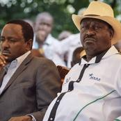 Raila Odinga Will Go For Presidential Candidate In 2022, Oburu Odinga