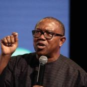 'Buhari's Govt Borrow Money On Consumption And Not Productivity'- See reactions to Peter Obi's tweet
