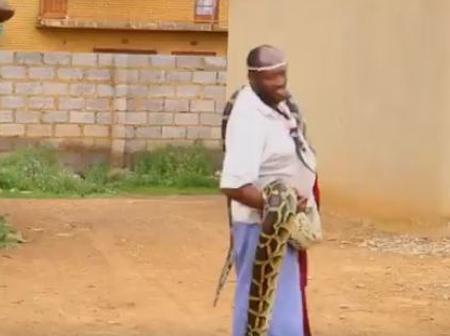 Soweto Sangoma and his snakes basking outside in the sun see images