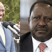 Ruto- Raila Offing Alliance in Limbo as Mp Gachagua Say They Have no Business Working with Raila