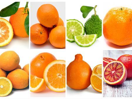 Do You Know Your Oranges?
