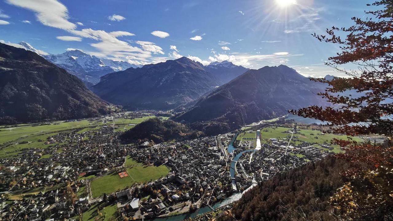 Wandertipp: Harder – In die Heimat der Oberländer Steinböcke