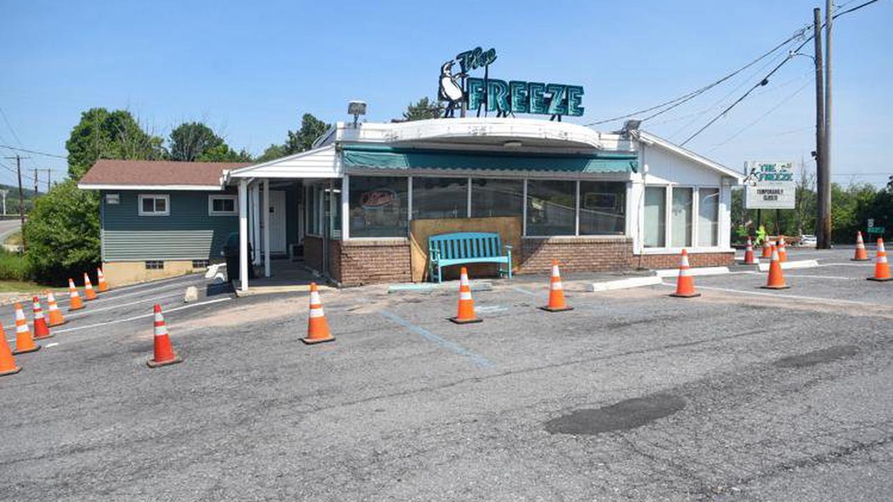 Caring for freeze-damaged palms