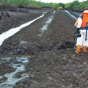 Buhari Govt Accused of Expending N138bn on Ogoni Cleanup in 4 Years with Little to Show for It
