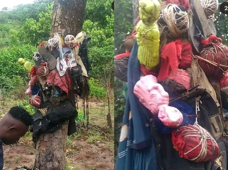 Always Pray For God's Protection, See What Were Found In An Evil Shrine In Abia Forest (Photos)