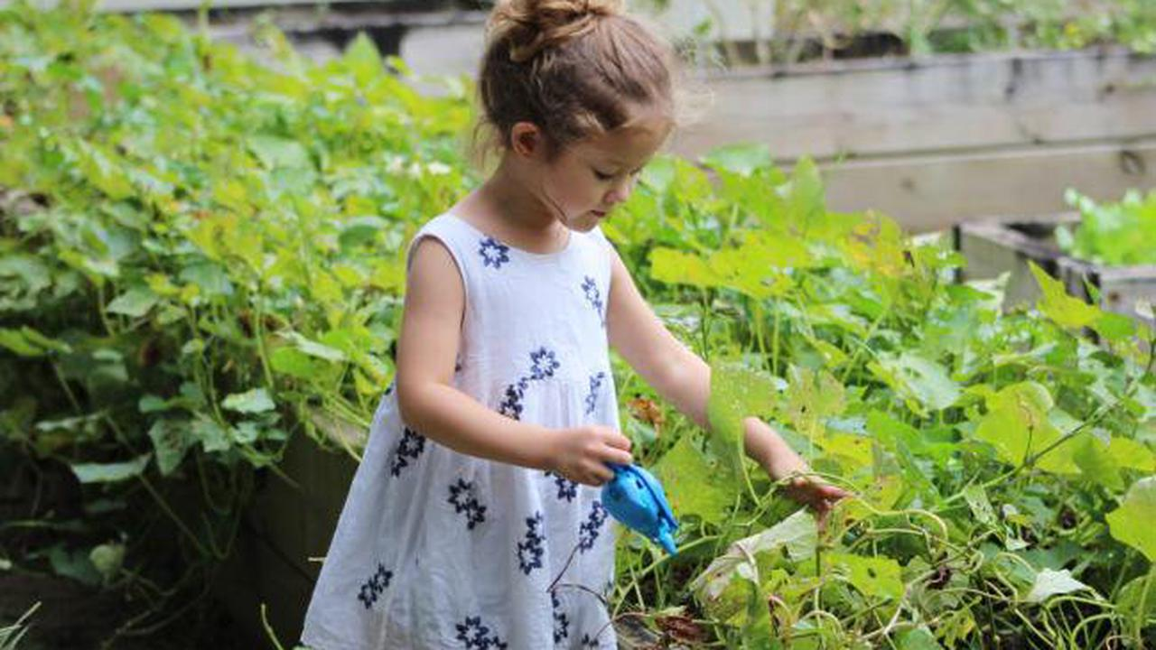 Cornish kids with disabilities to get opportunity to fall in love with gardening.