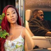 Erica And Kiddwaya React After A Kiddrica Fan Called Their Relationship The Best Ship