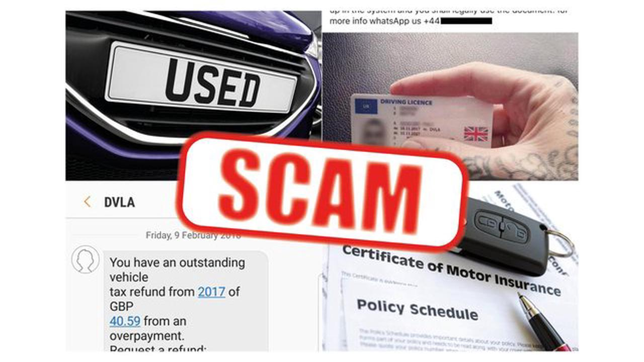 Dodgy licences and 'bargain' insurance among the online scams that could cost motorists thousands