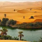 Check Out The Beauty Of Yobe State Desert And What You Should Know About It