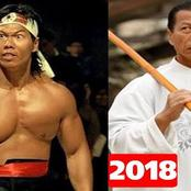 Tribute To Action Movie Star Bolo Yeung