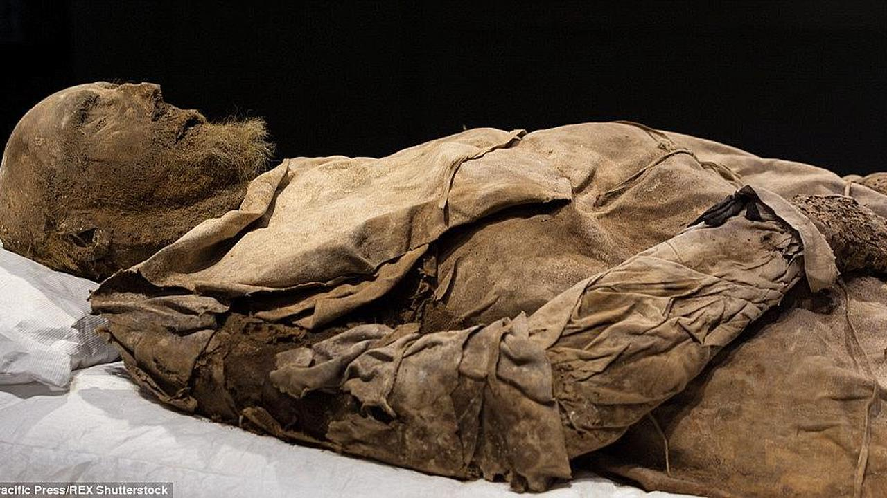 Unravelling the mystery of the mummified bishop buried with a foetus: Body of 17th century church leader Peder Winstrup was concealed with his GRANDSON hidden at his feet, new analysis reveals