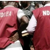 NDLEA Arrest Man With Two Human Head In Ondo
