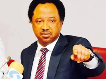 Senator Shehu Sani speaks on kidnapping of pastors- See what he said and how people reacted