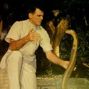 Bill Haast The Only Man On Earth To Allow 172 Snakes to Bite Him In Order To Get A Cure for humans.