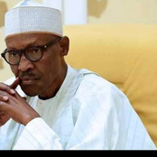 Take Home From Buhari's Speech on the Kidnapping of 317 Students of