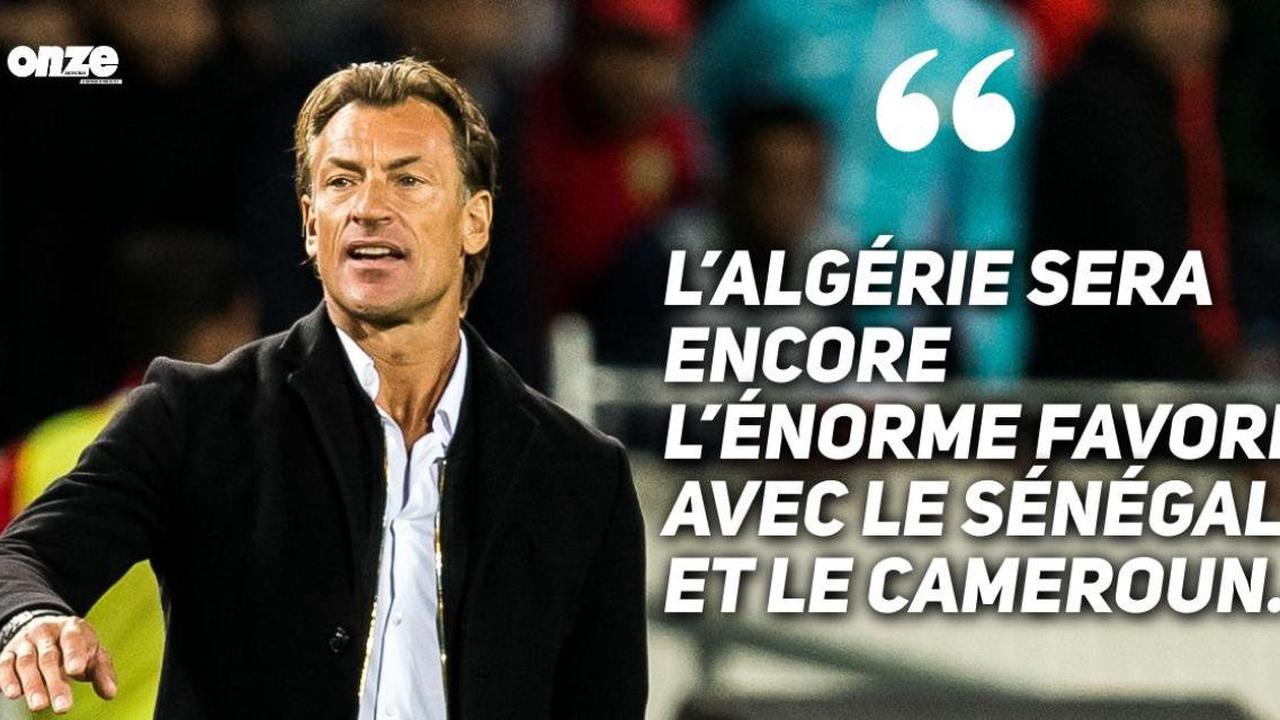 """""""Aborder la CAN-2022 avec l'objectif de préserver notre titre"""" (Belmadi)"""