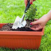 Keep Your Containers Looking Great With These 6 Simple Tricks