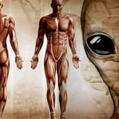 This Controversial Book Argues That Humans Are Not From Earth But Are Aliens Who Arrived from Space