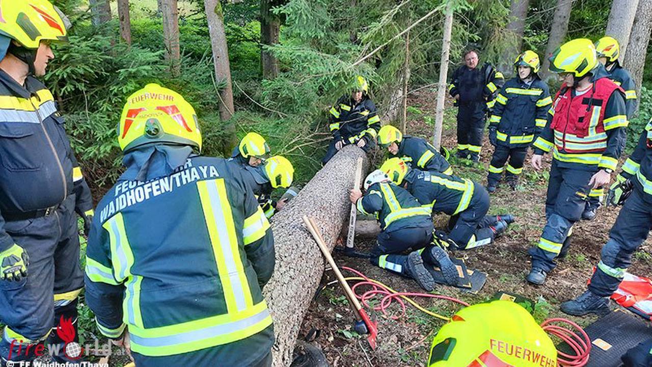 Nö: Zwei Feuerwehren beüben Forstunfall in Waidhofen an der Thaya