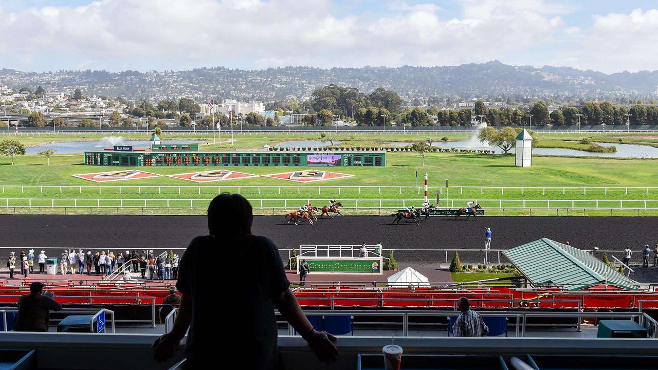 Golden Gate Fields could hit jackpot with state's sports betting initiative