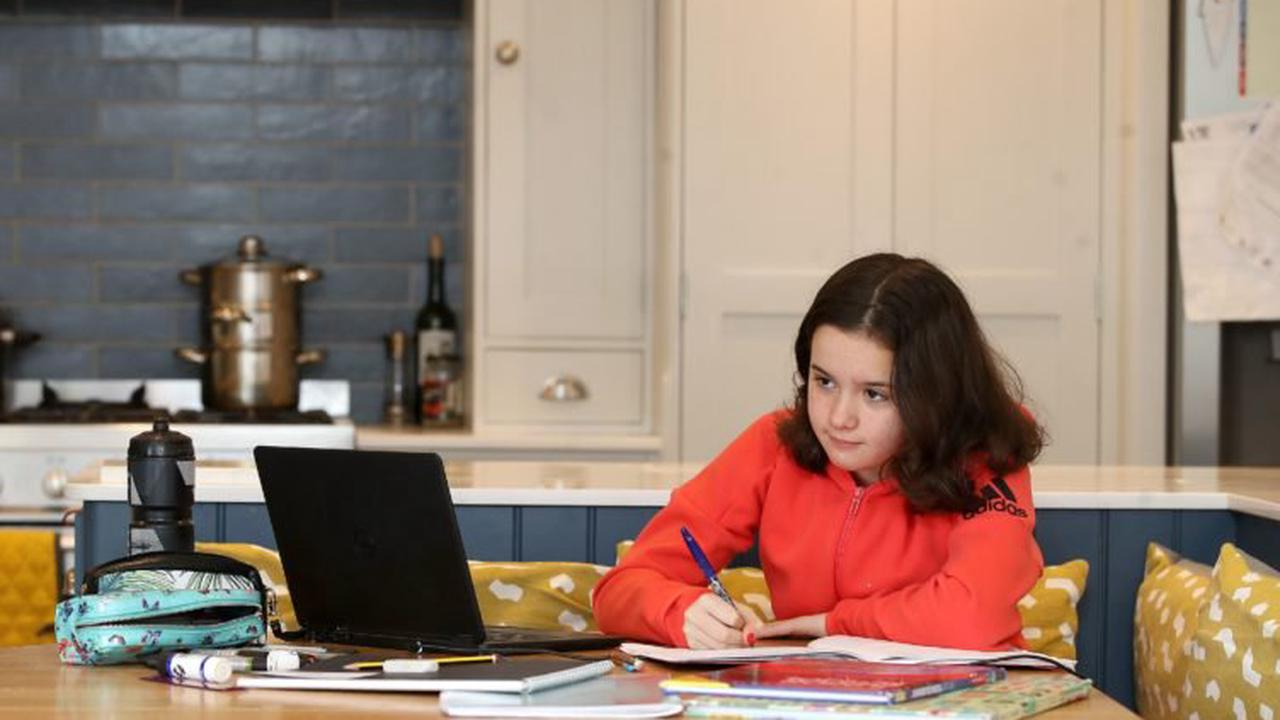 'Unacceptable level of opaqueness' over homeschooling, MPs say
