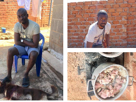 Congolese Scammer Living in DRC, Eats Dog Meats As Ritual, to Enable Him Scam SA Women- Lady Reveals