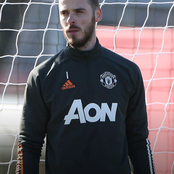 Why De Gea And Martial Missed The Palace Match