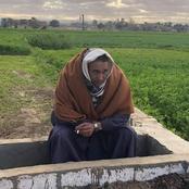 من وسط البرسيم. أمير الشعراء علاء جانب يبعث رسالة للمصريين
