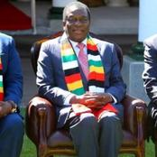 War Looming In Zimbabwe! After The ZLHR Drags The Government To Court, Read For More.