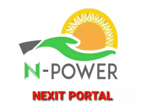 Npower Batch A and B: Send Me These Details Right Now - Nneka Nkem