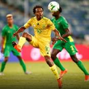 Potter hints at Tau's Bafana withdrawal