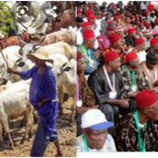 Opinion: Easterners Should Open A Grazing Farms For Fulani Herdsmen In Other To Bring Harmony